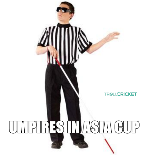 Umpiring trolls in cricket