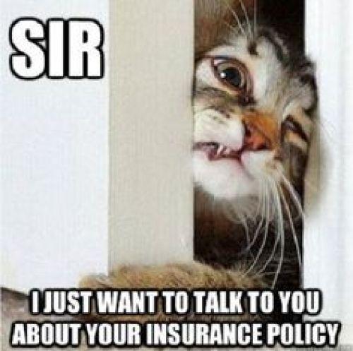 Insurance Memes and Trolls