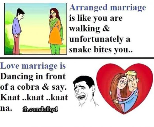 Love marriage vs family marriage troll pics